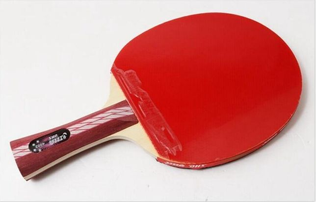 Paleta tenis de masa DHS 4002