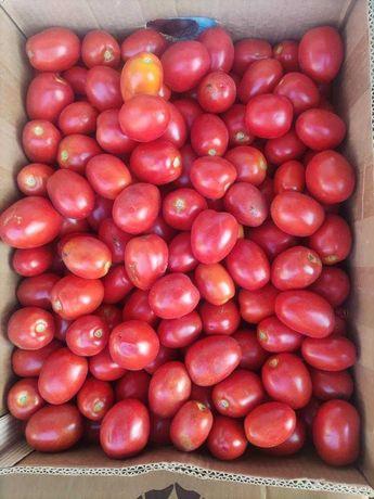 Засолочные соковые  Тарановские помидоры  Новичок