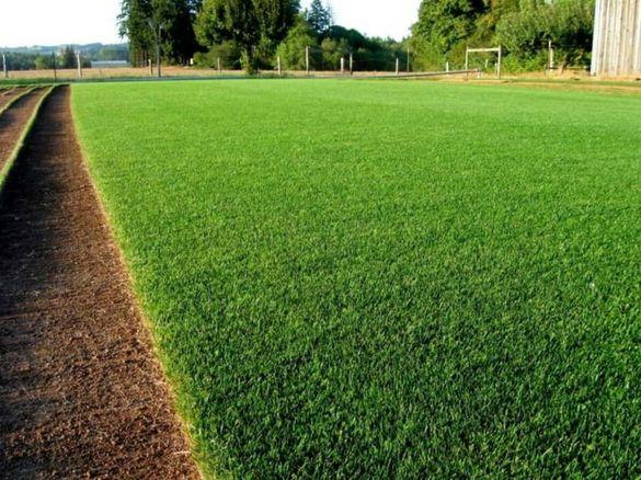 Подръжка на тревни площи