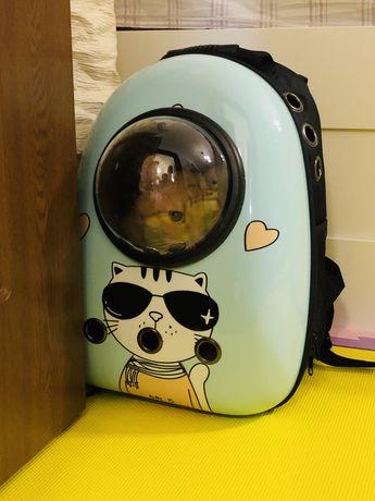 Rucsac nava spatiala pisici/catei