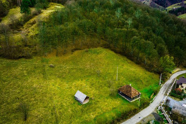 Casa + teren + padure de vanzare in muntii Apuseni (Tara Motilor)