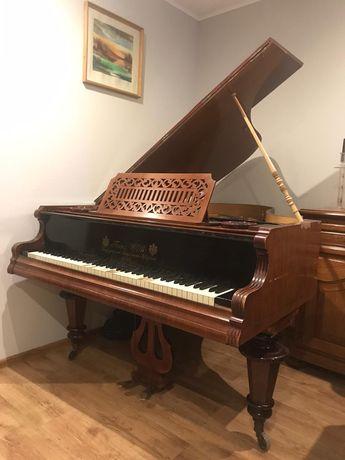 Vand pian wienez.