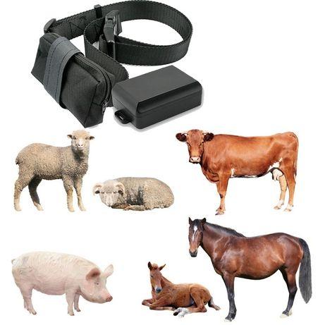 gps трекер для лошадей/ малга арналган ЖПС