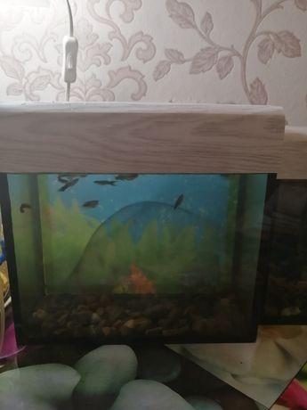Аквариум. С рыбками.. 6.5 литров...