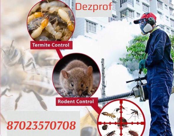 Уничтожение клопов тараканов термитов гарантия 100%
