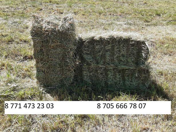 Продаётся качественное горное сено в тюках с Калиновки, без посредника