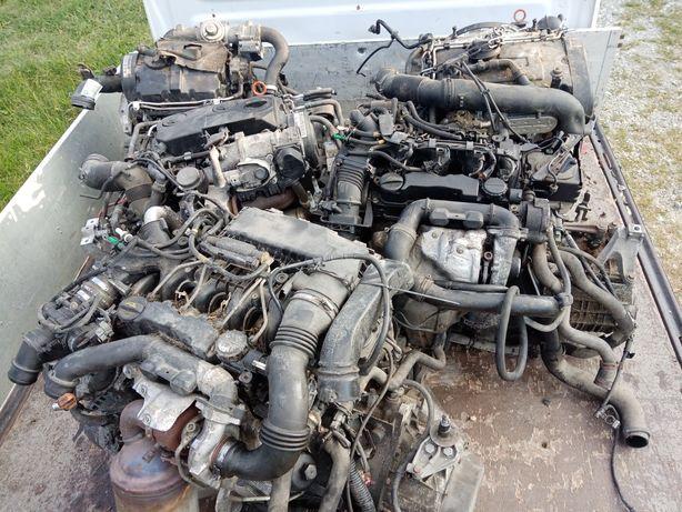 Cutie viteze vw 1.9 diesel motor bls, bxe, bhc orice piesa