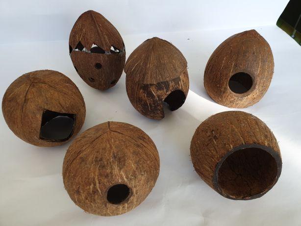 Ascunzatoare pentru pesti, creveti acvariu,lemne,plante,nuca cocos