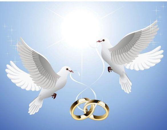 бели гълъби