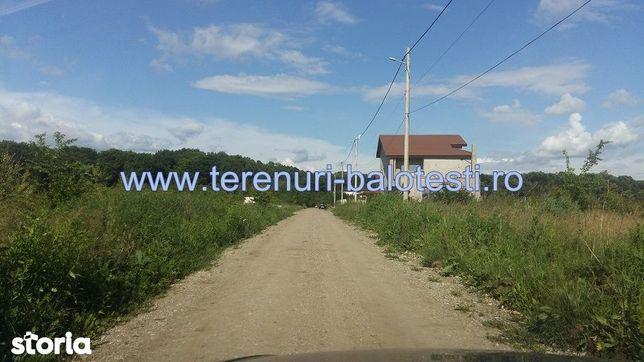 Teren Balotesti,vecinatate padure,Edenland,500 mp,15000 Euro