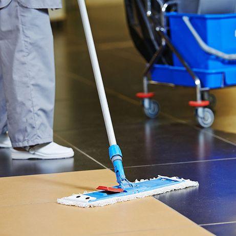 Firma complexa, pentru curățenie imobile, deratizare dezinsecție
