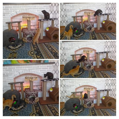 Домики и когтеточки для кошек