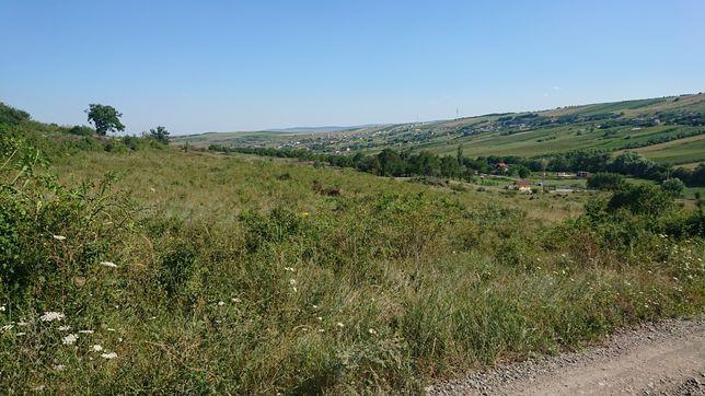 Teren Cluj Valea Fanatelor