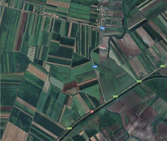 Vand teren arabil extravilan Moftin- 1.13 ha