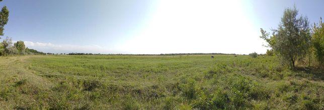 Сдается в аренду Земельный участок 6.5 гектаров