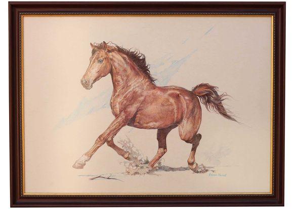 Страхотни картини на коне нарисувани с химикал