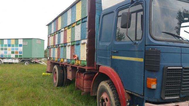 Camion apicol (Roman - raba) si 72 cutii
