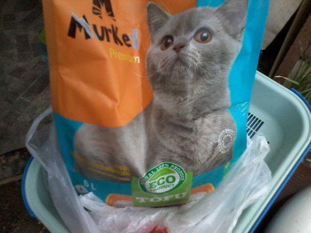 для кота  - Туалет-лоток, миска, когтеточка ,наполнитель Тофу- 3кг