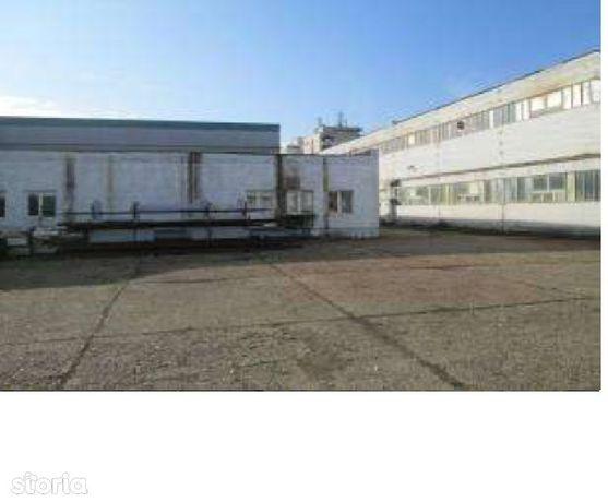 Imobil Municipiul Baia Mare ( teren+hale+birouri) - Alecsandri 72
