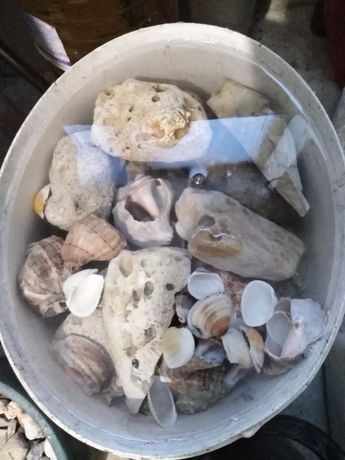 Камъни за  Аквариум декорация и естествен грунд ситен и по едър