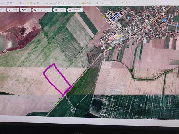 Teren în Leș comuna Nojorid cu front la DN 79 direcția Oradea - Arad