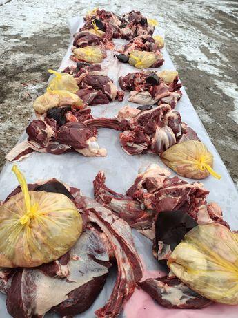 Соғым, ет,  мясо,  говядина,  сиыр еті.