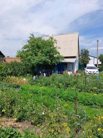 Дачный дом, огород, баня