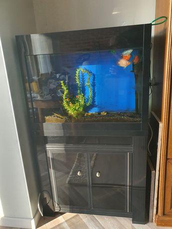 Продам аквариум на 120 литров. Срочно