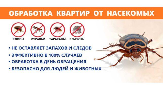 Гарантия! Дезинфекция тараканов,клопов,муравьев,крыс,клещей