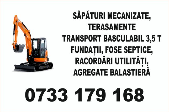 Miniexcavator   și  transport basculabil
