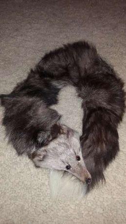Яка от лисица