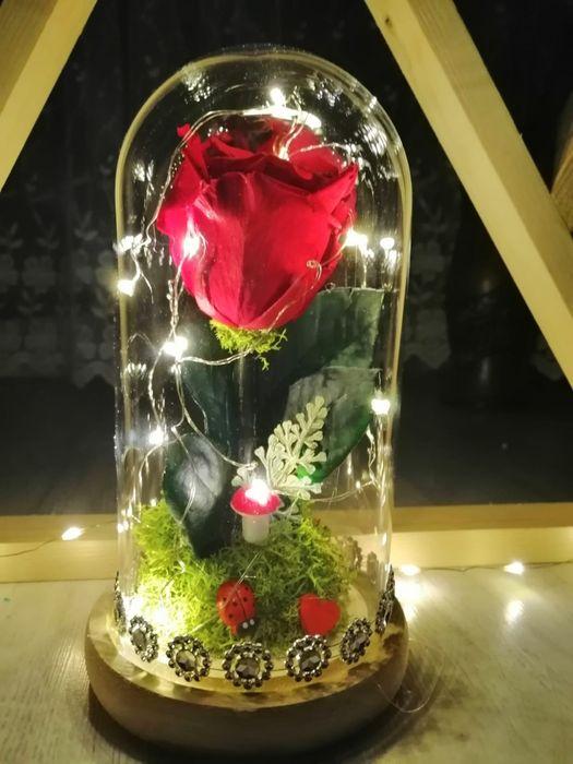 Trandafiri criogenati în cupola cu leduri ideea perfectă de cadou Targu Jiu - imagine 1