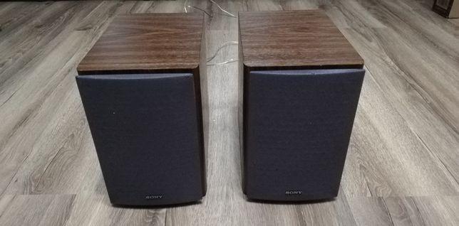 Boxe Sony SS-CCPZ1