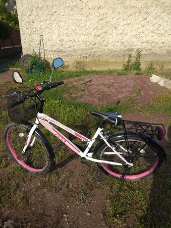 Bicicleta dama elegance