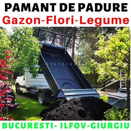 Ocazie Pamant Vegetal decopertat din Padure Pamant de flori gradina