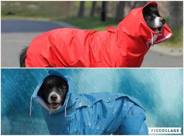 Дъждобран за голямо куче