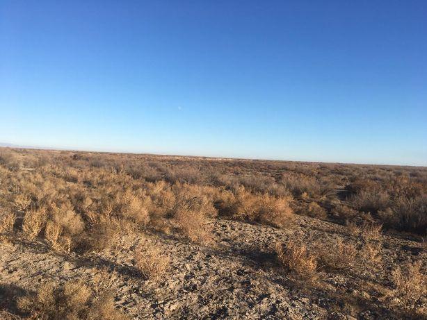 Продаётся земельный участок вдоль Сырдарьи с лечебной грязью