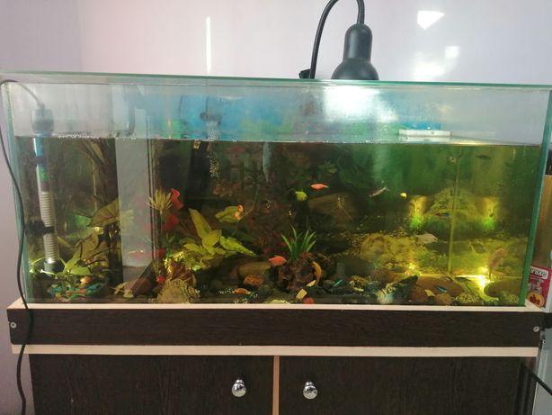 Продам аквариум с тумбой.