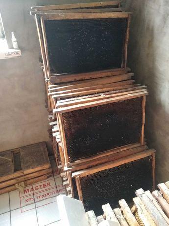 Пчелиные рамки.рамки для улиев