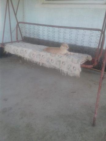 Качеля обмен на вольер для собак