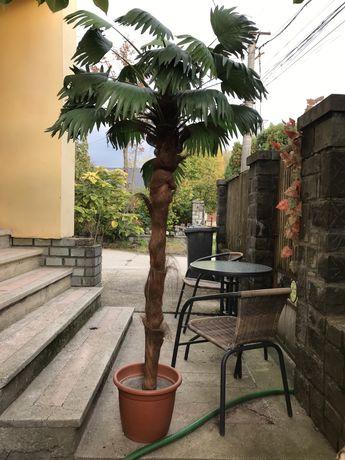 Palmier artificial + floare artificiala