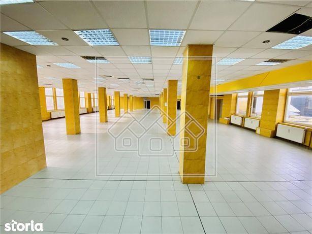 Spatiu industrial si birouri in zona Terezian - finisaje moderne