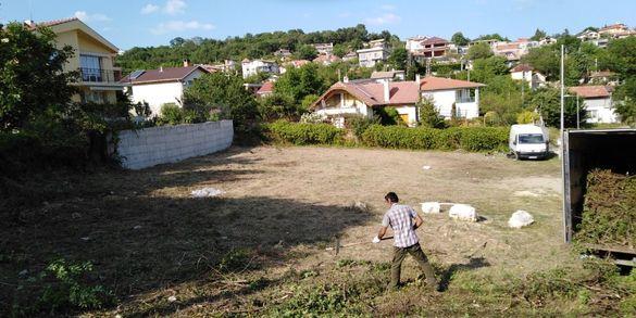 изрязване на трева храсти клони разумните цени