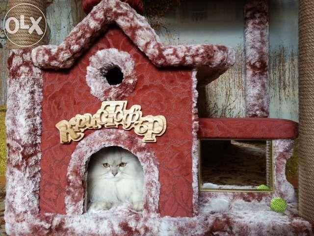"""Катерушка за котки """"Кристофър"""" гр. Трявна - image 1"""