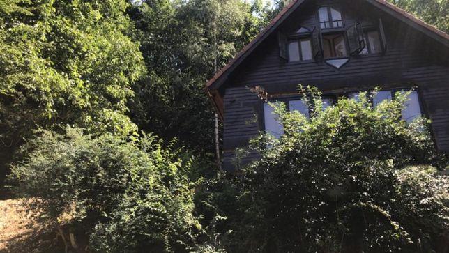 Cabana in padure, 6 dormitoare, 6 bai, toate utilitatile, teren 500m*