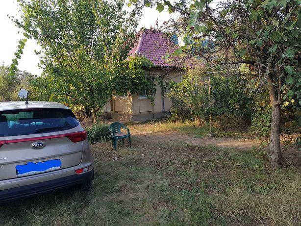 Casă de vacanță la Dunăre, curte 1800 mp, acces Autostrada A2 Fetești
