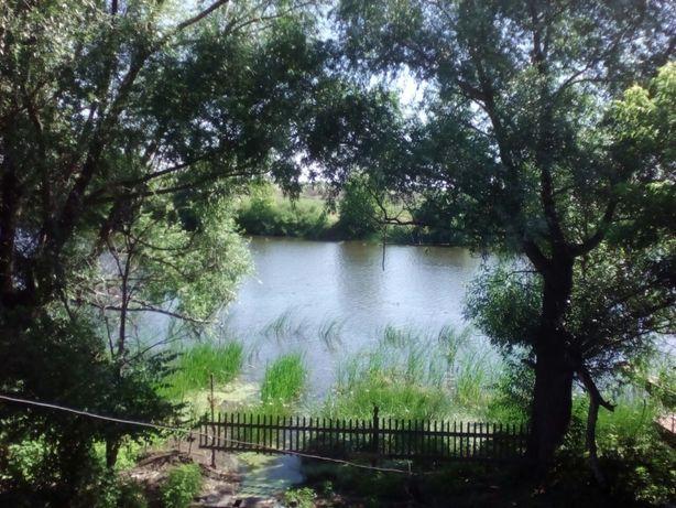 Земля 25 соток в аренду на берегу озера