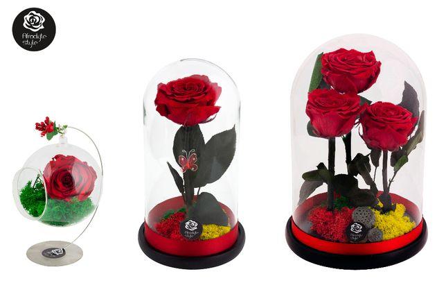 Livrare gratuita Bucuresti trandafiri criogenati rosii