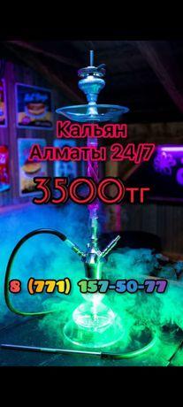К/а_л-ь-я-н аренда 24/7