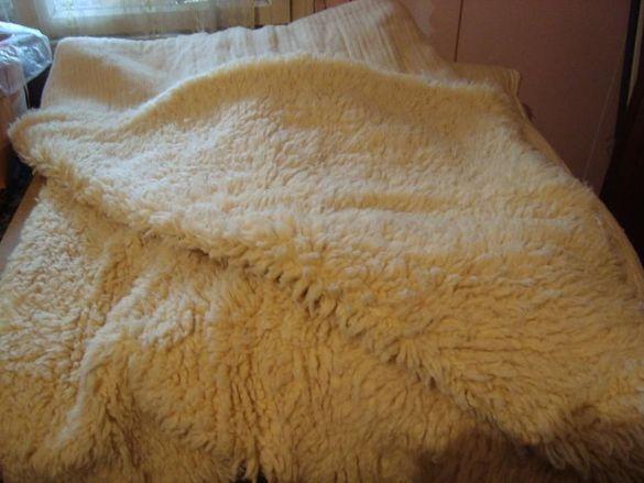 Бели вълнени китеници 5 бр, различни размери, 3 см косъм.